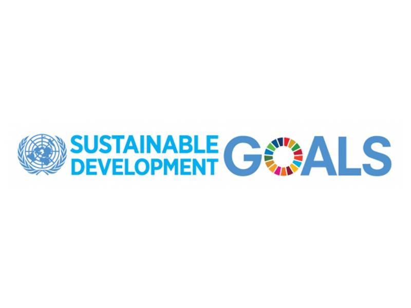 Website - UN Sustainable Development Goal 12: Ensure sustainable consumption and production patterns