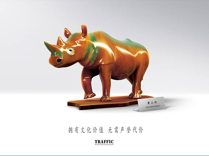 News -TRAFFIC: Key Visual for Green Collection Campaign: Rhino 绿色收藏主题宣传活动宣传品展示:犀牛
